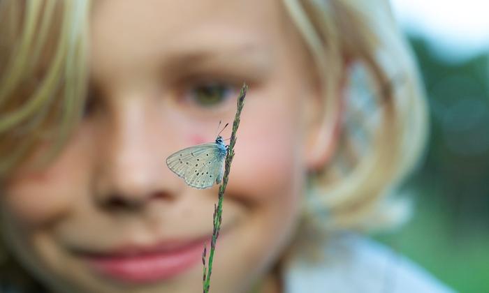 SCHOOL GEZOCHT voor natuuronderzoek, improvisatie en verbeelding.